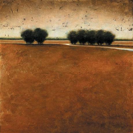 amber-fields